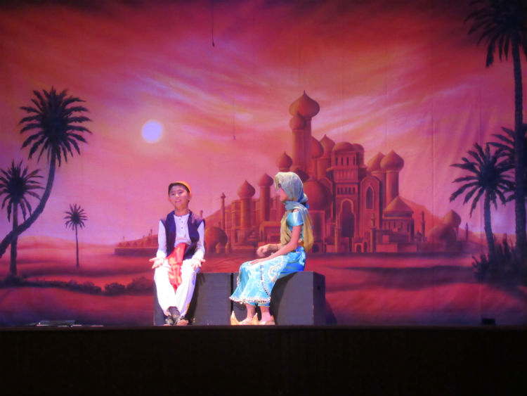 Aladdin 4882